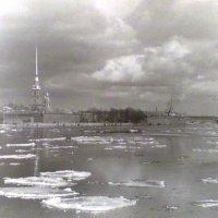 черно-белое фото... :: Марина Харченкова