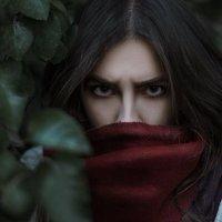 Инкогнито :: Дмитрий Бегма