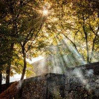 Утро в деревне Санаин. Армения. :: Nerses Matinyan