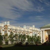 Висячий сад. :: Владимир Гилясев