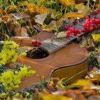 Осень задумчиво трогает листья.... :: galina tihonova