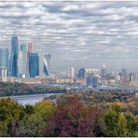 Вид на Сити с Воробьевых гор :: Александр Беляев