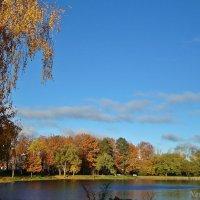 Осенний звонкий воздух :: Лидия (naum.lidiya)