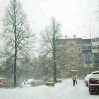 Снегопад. :: Валерий Молоток