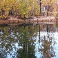 Смотрится в воды октябрь :: Татьяна Ломтева