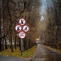 Никому и ничего нельзя!!! :: Евгения Каравашкина