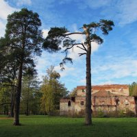 Руины театра в Александровском парке :: Ирина Румянцева
