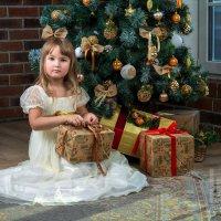 Новогодняя фотосессия :: Любовь Синица