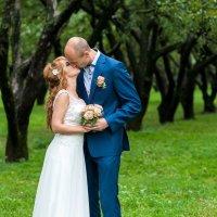 Свадебная прогулка :: Павел Хохлов
