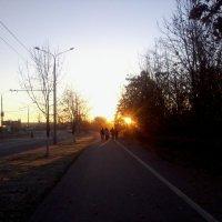 Осеннее морозное утро :: Галина