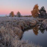 Когда зори становятся холоднее... :: Roman Lunin