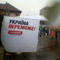Выборы в Украине!... :: Миша Любчик