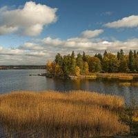 Золотая Осень....... :: Владимир Питерский