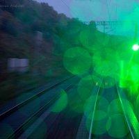 Зеленой дороги всем, кому нравится фото! ) :: Алексей Белик