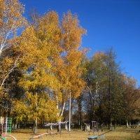 Золотая осень шагает по городу :: Елена Семигина