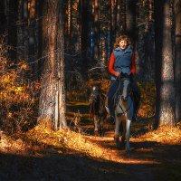Осенняя прогулка 5 :: Дмитрий Соколов