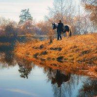 Осенняя прогулка 2 :: Дмитрий Соколов