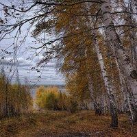 Скромная осень :: Владимир Макаров