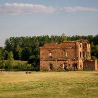 Руины мельницы в Лошицком парке .Минск :: Светлана З