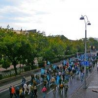 2 августа 2015 :: Альфия Музафарова