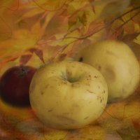 Осенний натюрморт... :: Tatiana Markova