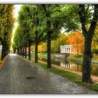 Осеннее.. :: tipchik