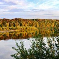Золотая осень :: Николай Варламов