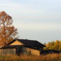 Российская осень :: людмила дзюба