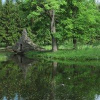 Парк регулярный в Пушкине :: Наталья