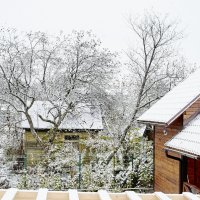 Первый снег :: Андрей Попов
