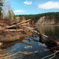 Таежная сибирская река... :: Александр Попов