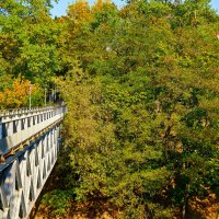 мост :: Александр Петрученко