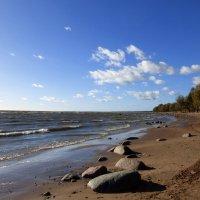 Финский залив :: Елена Грошева