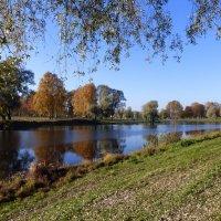 Муринский ручей :: Елена Грошева