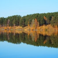 Отражение ярких красок осени :: Владимир Звягин