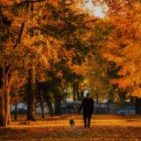 Осенний этюд :: Владимир Горубин