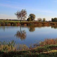 Осенняя мелодия реки... :: Лесо-Вед (Баранов)
