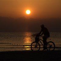 одинокий морской путник :: Люция Хорошилова
