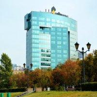 Здание Роснефть :: Вероника Подрезова