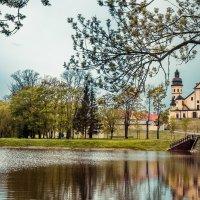 Замок в Несвиже :: Diana Proskurina
