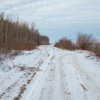 зимник уже готов... :: Сергей