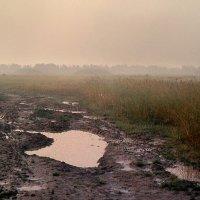 После дождя. Ностальгия ( 1985г.) :: Иван Миронов
