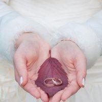 Два кольца :: Светлана
