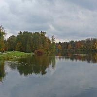 Я влюбилась в рыжую осень... :: Galina Dzubina