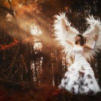ангел :: Ярослава Бакуняева