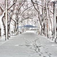 первый снег... :: Виталий Левшов