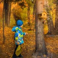 В осеннем лесу :: Олеся Корсикова