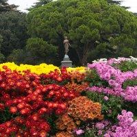 Никитский ботанический сад в Крыму. :: Николай Ковтун
