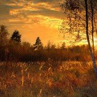 Осенний закат :: Вячеслав Минаев