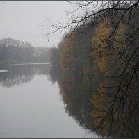 Осенний день :: Наталья Rosenwasser